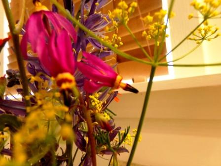 Mountain Wildflowers - Castlegar