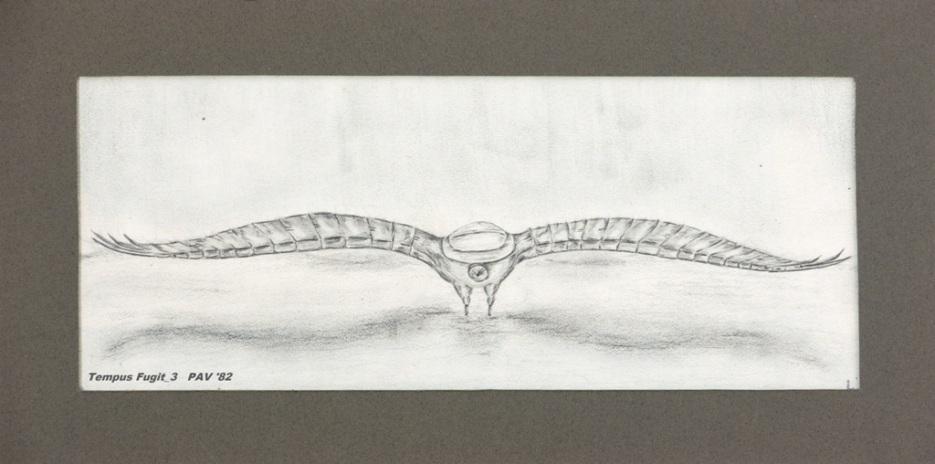 """Tempus Fugit_3 - 1982 - Pencil on paper - 4"""" x 10"""""""