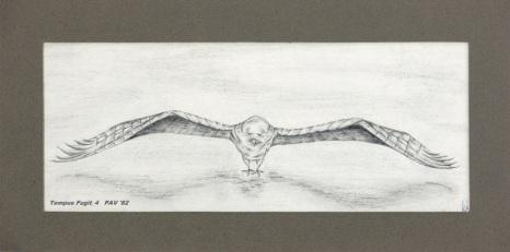 """Tempus Fugit_4 - 1982 - Pencil on paper - 4"""" x 10"""""""