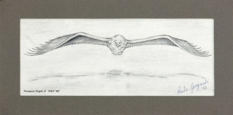 """Tempus Fugit_5 - 1982 - Pencil on paper - 4"""" x 10"""""""