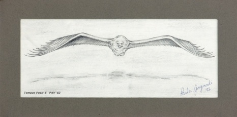 "Tempus Fugit_5 - 1982 - Pencil on paper - 4"" x 10"""