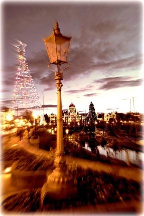 Victoria winter 2014